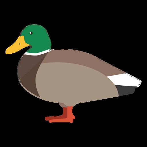 Pato vista lateral plana Transparent PNG
