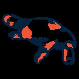 Duotono platypus ilustración
