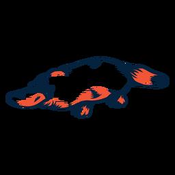 Duotone platypus lying