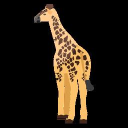 Girafa vista traseira plana