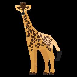 Girafa vista lateral plana