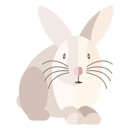 Rabbit front view flat