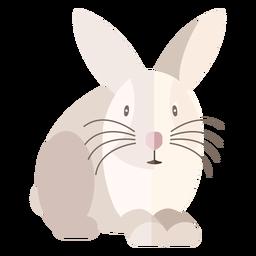 Vista frontal do coelho plana