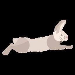Coelho correndo plana