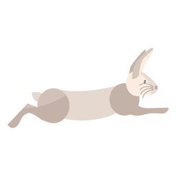 Rabbit running flat
