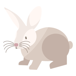 Rabbit side view flat