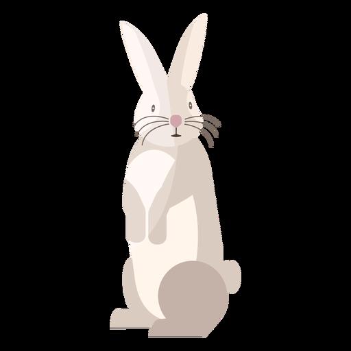 Conejo de pie plano Transparent PNG