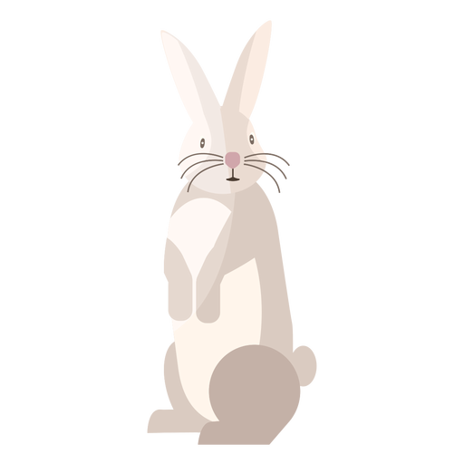 Rabbit standing flat Transparent PNG