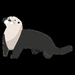 Seeotter, der oben schaut
