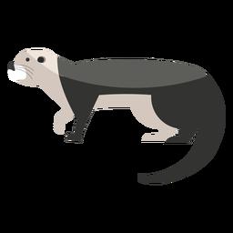 Sea otter walking flat
