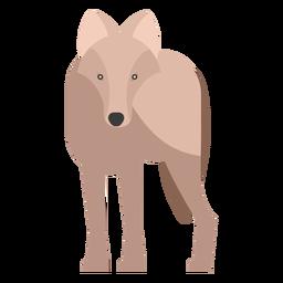 Wolf Vorderansicht flach