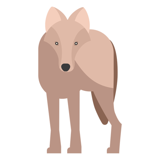 Wolf front view flat Transparent PNG