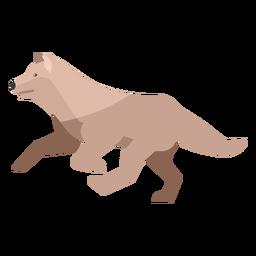 Lobo corriendo plano