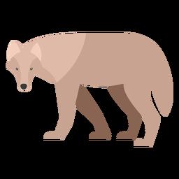 Lobo vista lateral plana