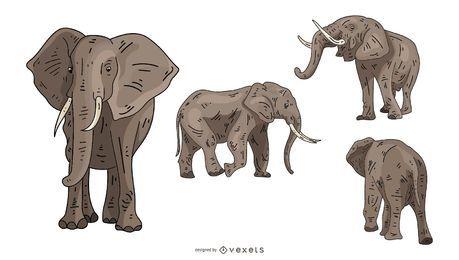 Conjunto de ilustração de elefante