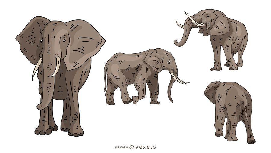 Conjunto de ilustración de elefante