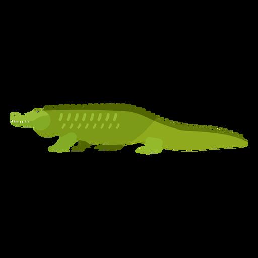 Cocodrilo cocodrilo cola colmillo plano Transparent PNG