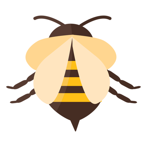 Bee sting stripe wing wasp flat Transparent PNG