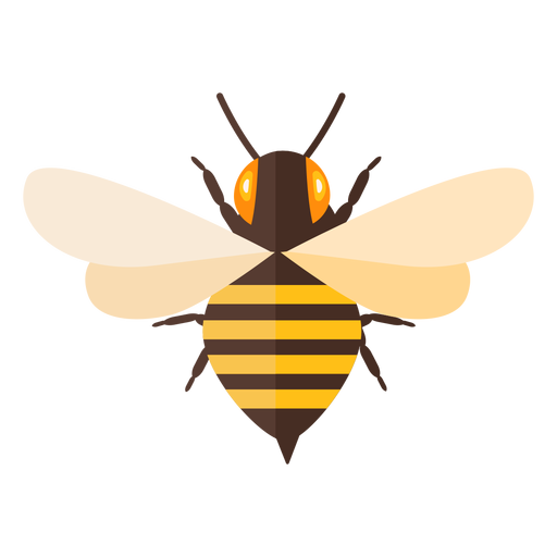 Bee stripe sting wing wasp flat Transparent PNG