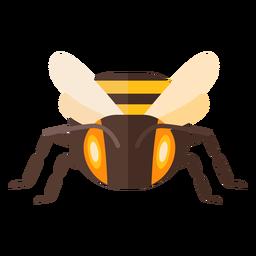 Bee stripe wing wasp flat