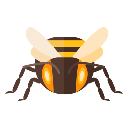 Bee stripe wing wasp flat Transparent PNG