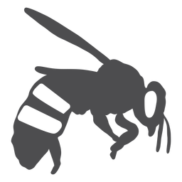 Bee stripe wing wasp silhouette