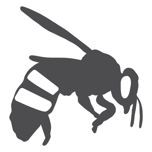 Bee stripe wing wasp silhouette Transparent PNG