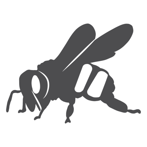 Bee wing stripe wasp silhouette Transparent PNG