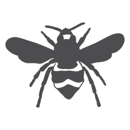 Silueta de raya de avispa de ala de abeja