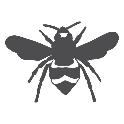 Silhueta de listra de vespa de asa de abelha Transparent PNG