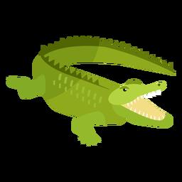 Cocodrilo cocodrilo mandíbulas cola colmillo plano