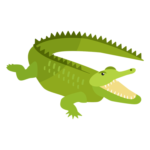 Crocodile alligator jaws tail fang flat