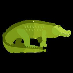 Colmillo de cola de cocodrilo plano