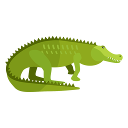 Crocodilo jacaré cauda fang plana