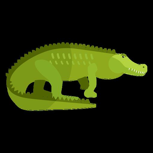 Crocodile alligator tail fang flat Transparent PNG