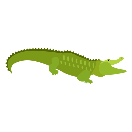 Crocodile alligator tail flat Transparent PNG