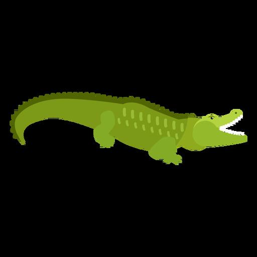 Crocodile alligator tail flat