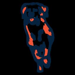 Filhote de cachorro do cão correu o curso do duotone