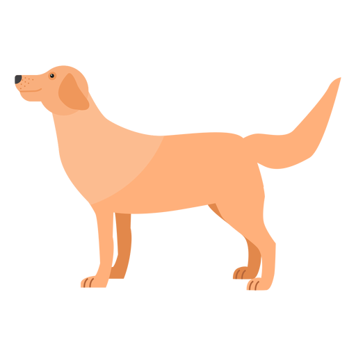 Dog puppy tail ear flat Transparent PNG