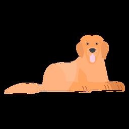 Perro cachorro lengua cola oreja plana