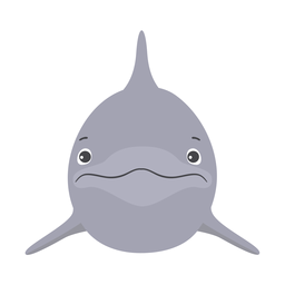 Dolphin flipper head flat sticker