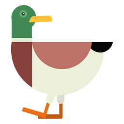 Drake cola de pato pato salvaje pico plano redondeado geométrico