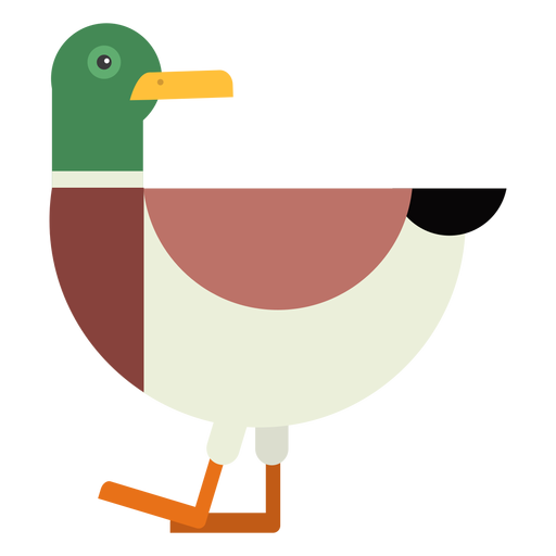 Drake cola de pato pato salvaje pico plano redondeado geométrico Transparent PNG