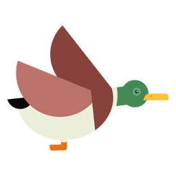 Drake duck wild duck flying beak flat rounded geometric