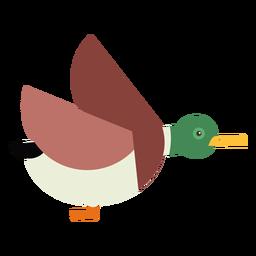Drake pato pato salvaje volando pico plana redondeada geométrica