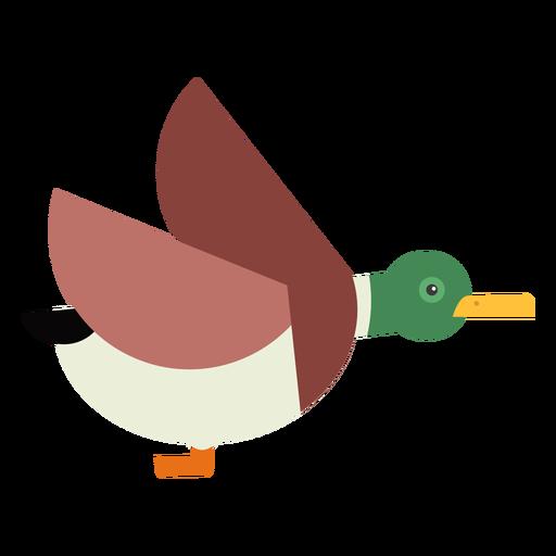 Drake duck wild duck flying beak flat rounded geometric