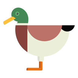 Drake Duck Wild Duck Tail Schnabel flach abgerundet geometrisch