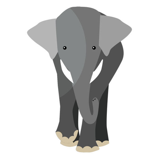 Elephant ear ivory trunk flat