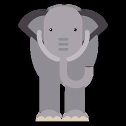 Oreja elefante de marfil plana redondeada geométrica