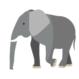 Elephant ear ivory trunk tail flat
